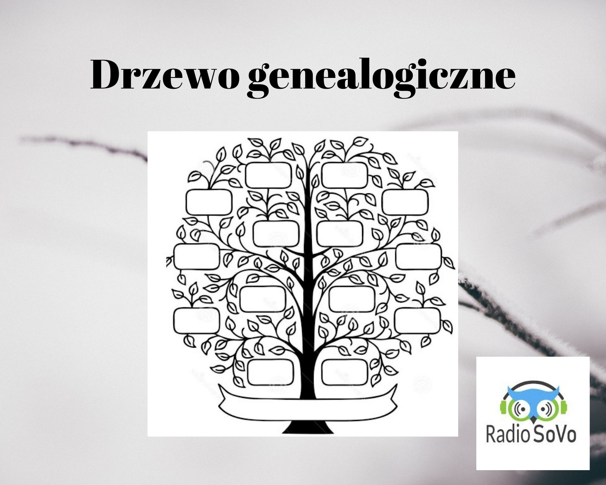 Szukamy swoich korzeni w Internecie – przegląd programów do budowy drzewa genealogicznego